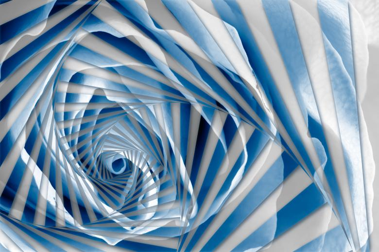 Free Stock Photo of Blue Rose Spiral Created by Nicolas Raymond