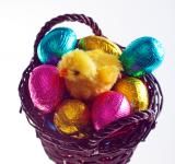 Free Photo - Easter