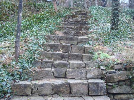 Stone steps in the park - Free Stock Photo