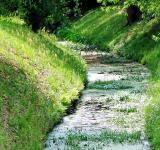 Free Photo - Drainage Ditch