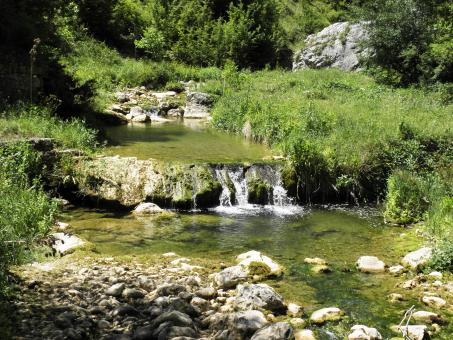 Small stream in Stara planina mountain - Free Stock Photo