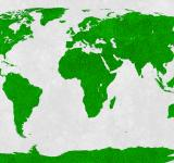 Free Photo - World Map - Green Velvet