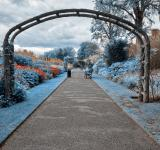 Free Photo - Blue Belfast Botanic Gardens - HDR