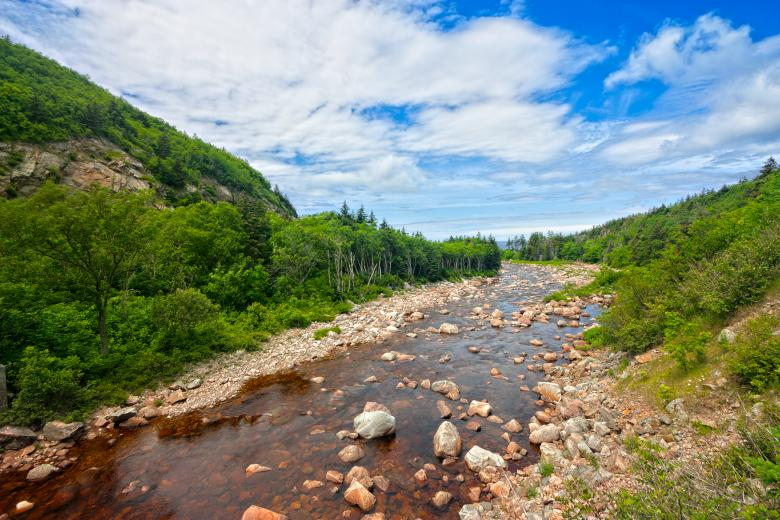 Free Stock Photo of Cabot Trail - HDR Created by Nicolas Raymond