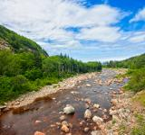 Free Photo - Cabot Trail - HDR