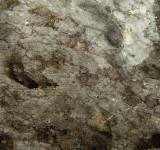 Free Photo - Dirty Metal Texture