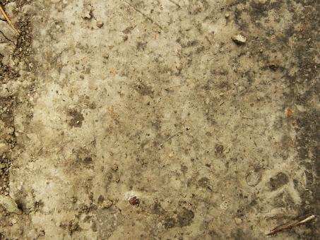 Dirt Texture - Free Stock Photo