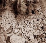 Free Photo - Mineral Stone and Mud Texture