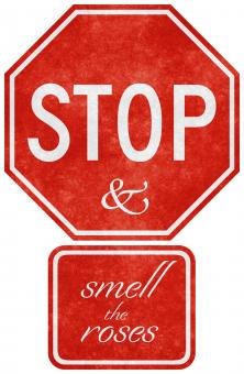 Grunge Road Sign - Stop & Smell the  - Free Stock Photo