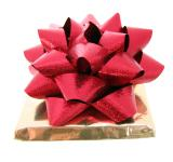 Free Photo - Gift and bow