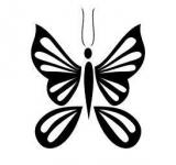 Free Photo - Vector Tribal Butterfly