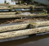 Free Photo - Old wooden dock