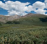 Free Photo - Guanella Pass Mt Bierstadt