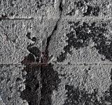 Free Photo - Cracked Concrete Texture