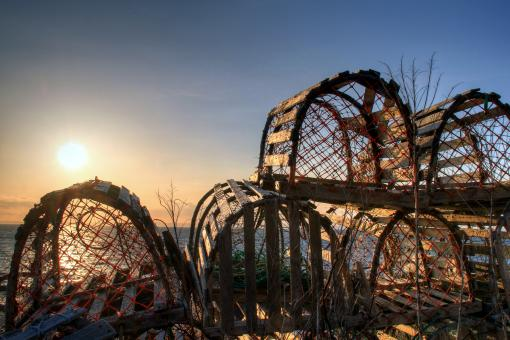 Lobster Pots - Free Stock Photo