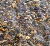 Free Photo - Gravel under water