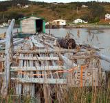 Free Photo - Old fishing stage