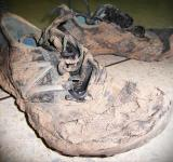 Free Photo - Muddy Sport Shoes