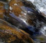 Free Photo - Water over smooth boulders in river