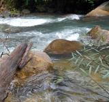 Free Photo - River and Boulders