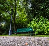 Free Photo - Bench in the park