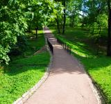 Free Photo - Path in park