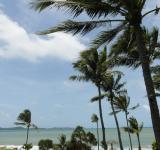 Free Photo - Tropical Paradise
