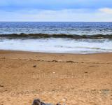 Free Photo - Alone man on the beach