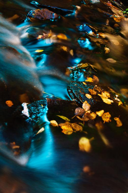Autumn Stream - Free Autumn Stock Photos