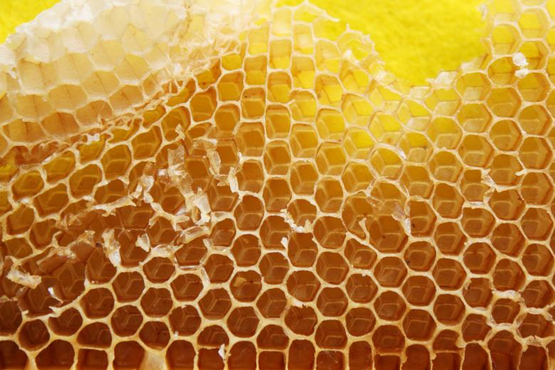 Free Stock Photo of Beehive texture Created by Val Lawless