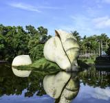 Free Photo - A hand maid conch shell statue