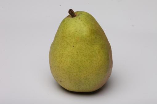 Pear isolated on white. - Free Stock Photo