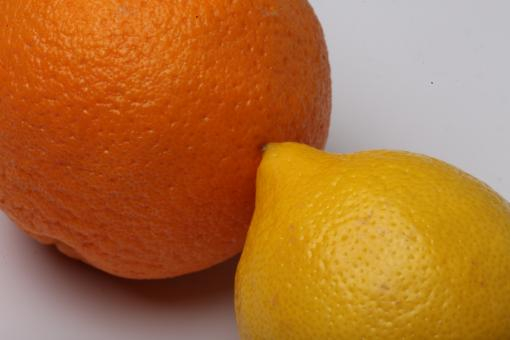 Lemon and Orange Isolated on white - Free Stock Photo