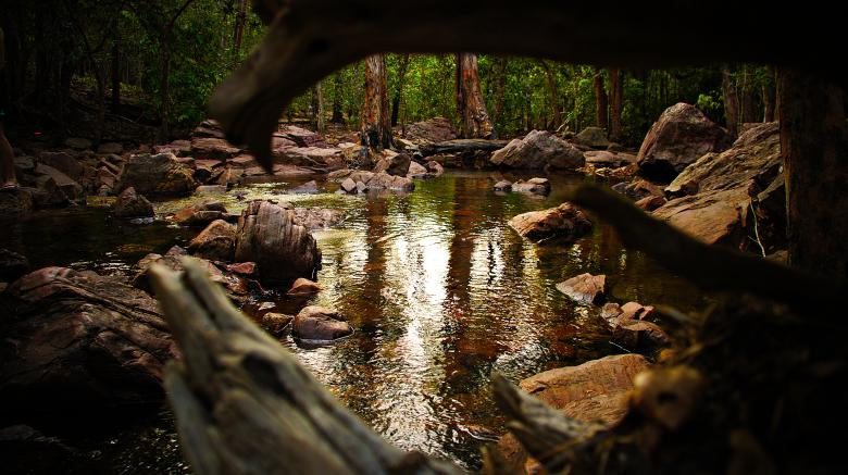 Free Stock Photo of Rocky Stream Created by Greyson Ferguson