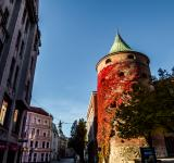 Free Photo - Powder Tower, Riga