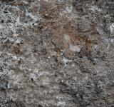 Free Photo - Muddy Soil Background
