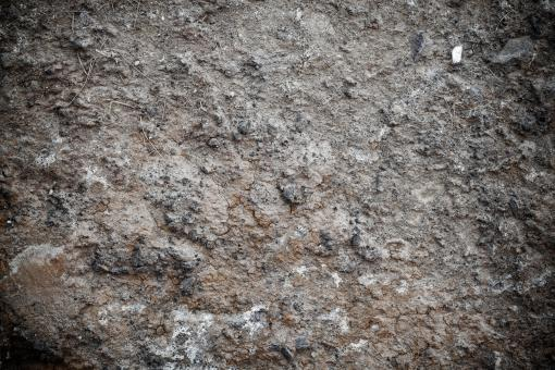 Muddy Soil Texture - Free Stock Photo