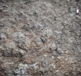 Free Photo - Muddy Soil Texture