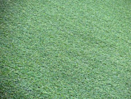 Artificial Grass Background - Free Stock Photo