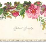 Free Photo - Antique Victorian Trade Card