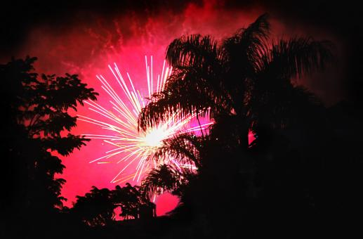 Pink fireworks - Free Stock Photo