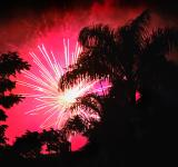 Free Photo - Pink fireworks