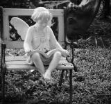 Free Photo - Reading Angel Garden Ornament