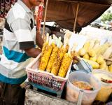 Free Photo - street vendor selling corn on the street