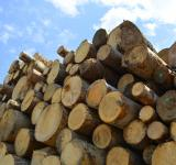 Free Photo - Wood logs