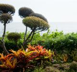 Free Photo - Beautiful gardens by the sea