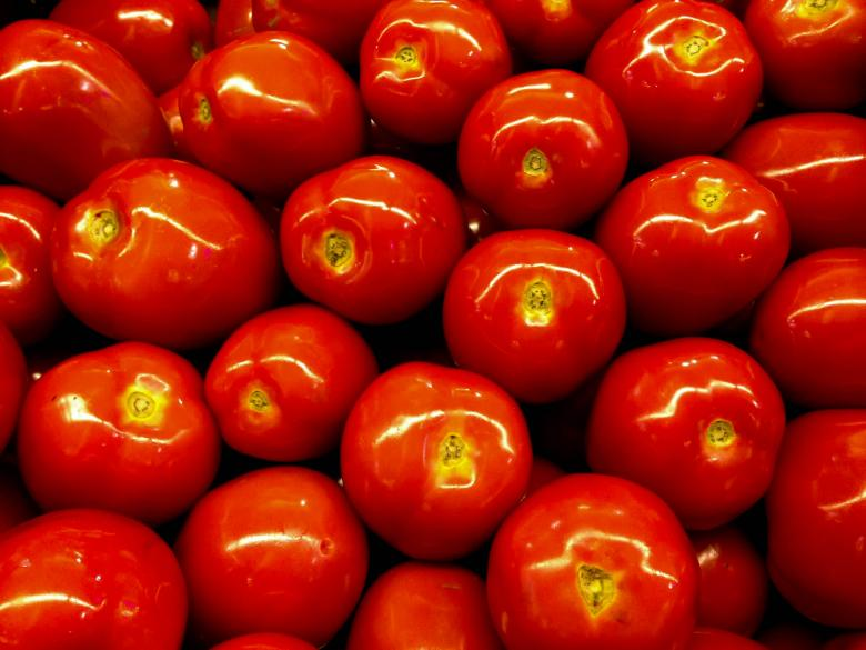 Free stock image of Healthy Tomatoes created by Julieta Nuñez Chapa