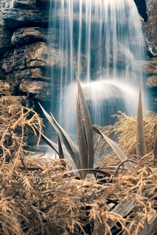 Free Stock Photo of Cross-Processed Waterfall Foliage - HDR Created by Nicolas Raymond