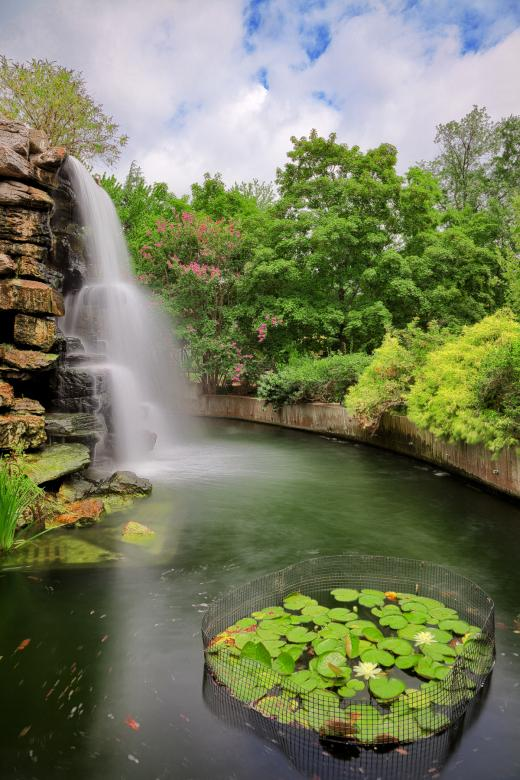 Free Stock Photo of Zoo Waterfall - HDR Created by Nicolas Raymond