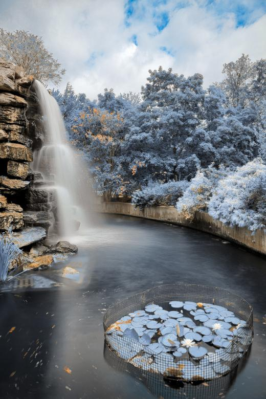 Free Stock Photo of Zoo Waterfall - Winter Blue HDR Created by Nicolas Raymond
